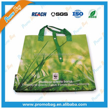 Foldable PP Woven Supermarket Shopping Bags
