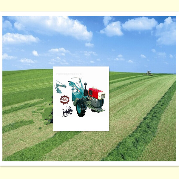 Wholesale export price factory quality farm tractor for sale philippines