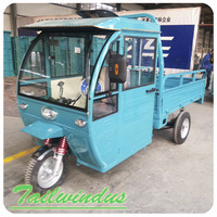 china cargo eletric tricycle