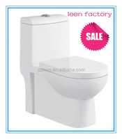 Bathroom aceesories manufacturer siphonic flush one piece toilet wc spy toilet cam