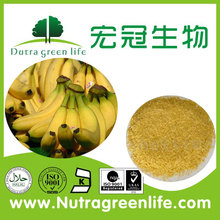 Nutragreenlife supply Freeze dried fruits powder