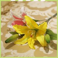 Promotion designs valentinies day flowers lillies