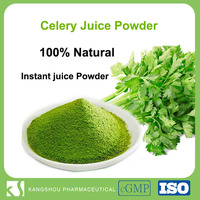 100% Natural instant water soluble organic celery juice powder