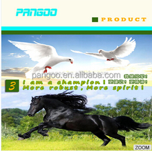 The horse probiotic acidophilus feed supplements