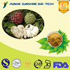 Soursop Fruit Extract/ Annona Muricata Extract / Graviola Extract