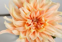 High quality Artificial flowers ,PU Dahlia flower for home decor