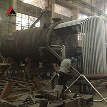 Best Selling! Top Class Waste Heat Recovery Thermal Oil Boiler