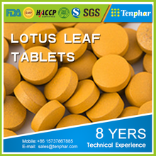 1000 mg Factory Natural Lotus Leaf Extract Folium Nelumbinis Tablets