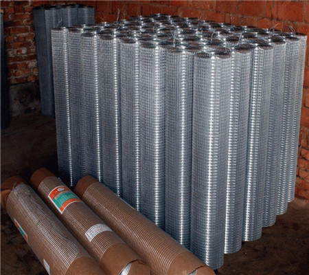New galvanized welded wire mesh rolls