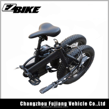 New Folding Fat E Bike /Folding Electric Bike /Foldable Ebike 250W