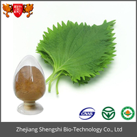 Green mulberry extract