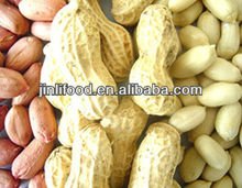 dried fruit producers whole peanuts agriculture