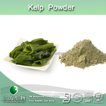 100% natural kelp powder,seaweed powder,powdered laminaria japonica