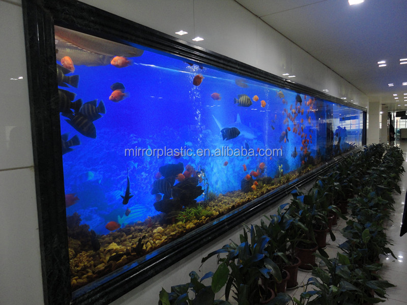 panoramic wall aquarium