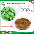 China Factory Supply Pure Natural Rosemary Oleoresin Extract Maintenance Skin/ Rosmarinic Acid