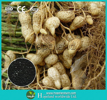 Humic Acid Granular Base Fertilizer