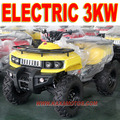 1000W Electric Quad Bike