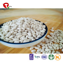 TTN Wholesale Price White And Red Kidney Beans From Egypt