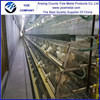 Best multi-tier A-type used chicken coop automatic H type cage for chicken farms