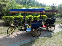 3 wheel electric ricksaw for passenger/pedal assisted e-rickshaw with roof/electric tricycle taxi for tourist