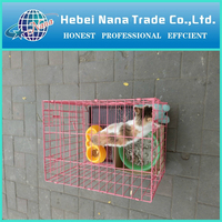 alibaba china chicken house rabbit cages