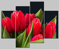 wholesale modern tulip canvas picture flower 4 panel canvas wall art