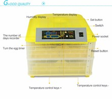 Newest Design brooder parrots hatching eggs Cheap Price Double Layers For Sale