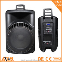 Buy 2x10 inch bluetooth wood portable active pa system big disco ...