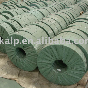 Prepainted Galvanized Steel Strips