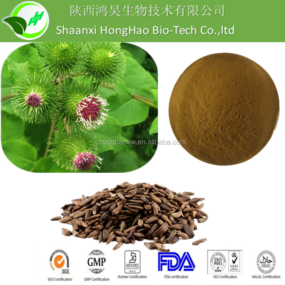 Burdock extract powder10% 30% with top quality competitive price