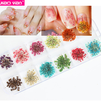 Natural 3D Nail Decals Nail Art Dried Flowers For Acrylic Nails #1471