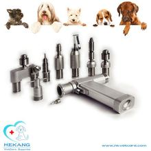 qualified dog clinic adopted bone drill