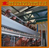frame chicken breed cage full line