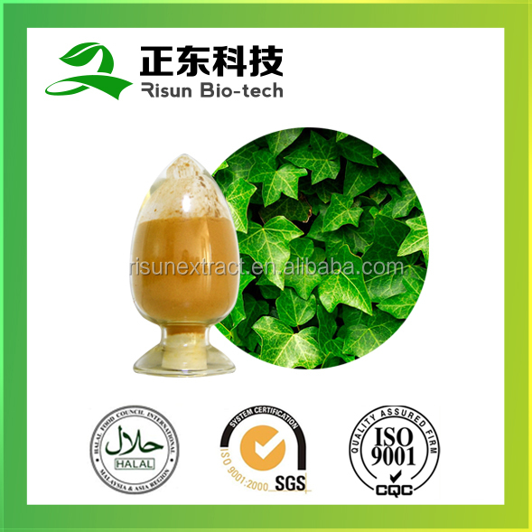 Factory supply anti-inflammatory 35% Hederagenin Ivy Leaf Extract, Ivy Extract
