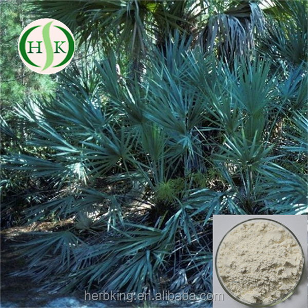 Factory Supply Sabal Extract High quality Natural Serenoa Repens Extract
