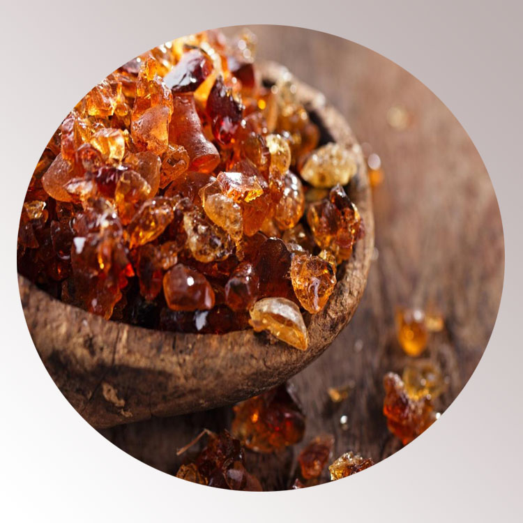 wholesale talha spray gum arabic powder gum arabic powder