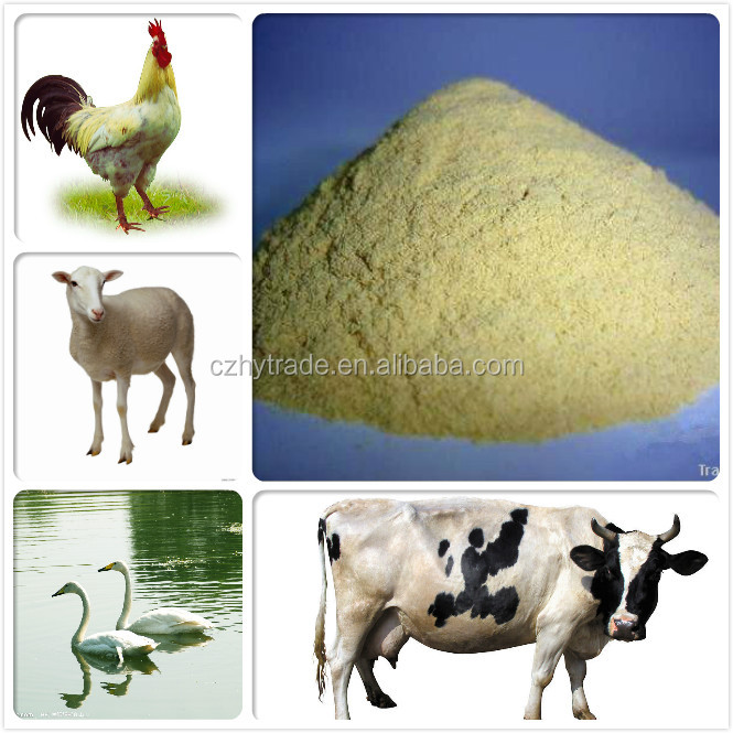 yeast feeds-cattle feed chick feed additive with ultra low price