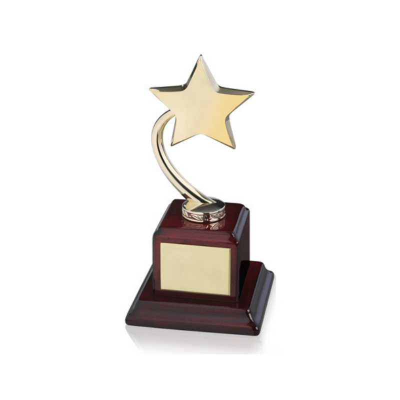 Custom metal star trophy for Collection