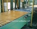chain conveyor (10 years authentic factory)