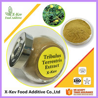 tribulus terrestris extract powder for capsules 40% 60% 90% total saponins