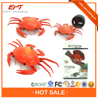 Interesting Rc Hobby Toys Cute Rc