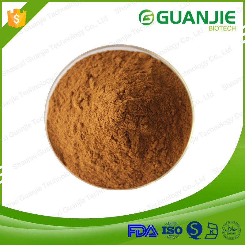 Low price of Radix Puerariae extract from China famous supplier
