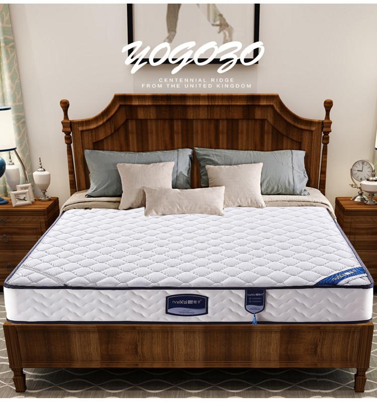 Natural latex King size Spring firm 3E coconut palm mattress - Jozy Mattress | Jozy.net
