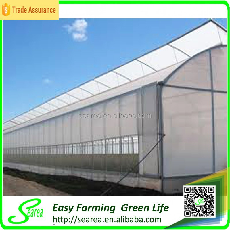 Sawtooth roof open greenhouse for sale