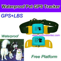 outdoor waterproof collar gps tracking device for pet, dog, cat, app tracking