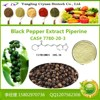 Piperine--Extracted from Black Pepper P.E.HPLC 30%--99%