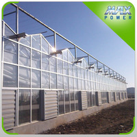 Maxpower Top Quality Greenhouse Products Greenhouses