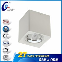 20W Aluminum Ceiling Surface Downlight Bright
