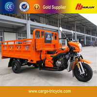 Motorized Driving Type Three Wheel Cargo Motorcycles/Adult Three Wheel Scooter/Tricycle