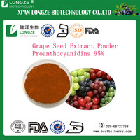 Grape seed extract / Vitis vinifera seed extract powder with proanthocyanidins 95% polyphenols 80% UV